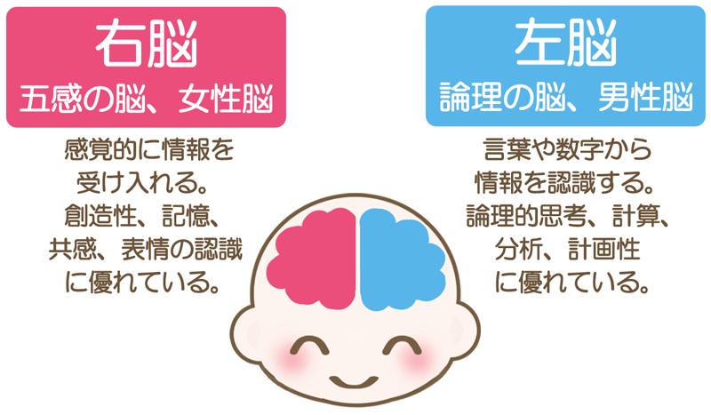男性と会話が続かない 男女の会話のすれ違い。その原因は脳の違いにある!?